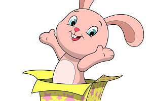 Sweet funny bunny