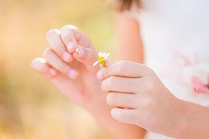 Little girl holding a daisy flower