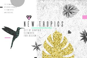 New Tropics. 111 graphic elements