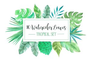 Watercolor Tropic Leaves Set