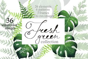 Fresh green collection