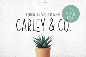 Skinny Font family Carley & Co.