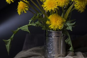 Still life with dandelions