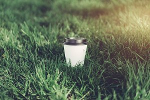 White paper coffee cup at park