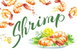 Shrimp bundle. Watercolor