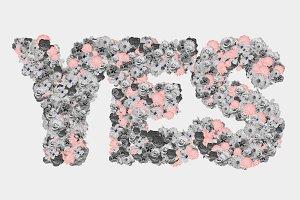 The Floral Alphabet
