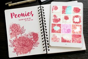 Peonies. Vector Set.