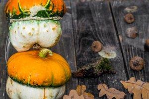 small pumpkin on wooden background, autumn