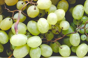 Grape picture, faded vintage look