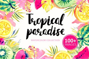 Tropical Paradise-watercolor set