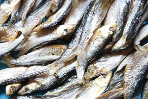 Dried Small fish. Soft focus.
