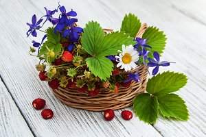 Wild strawberries