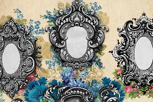 Ornate Floral Frames