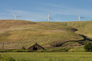 Abandoned farm with wind turbines