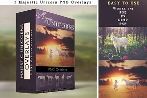 Unicorn Overlays - 5 PNGs -