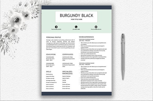 Resume Template Writing Tips