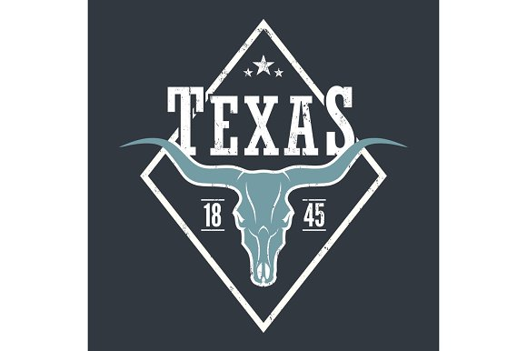 Texas State Tee Print With Longhorn Skull