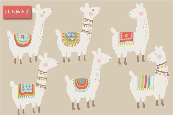 cute llama clipart illustrations creative market