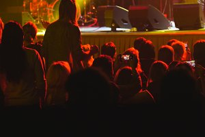 Spectators at a rock concert - crowd blurred
