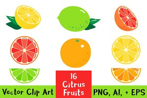 16 Citrus Fruits Clipart