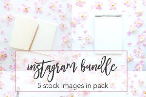 Wildroses Instagram Bundle