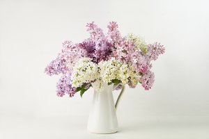 Lilac bouquet in a vase on white background