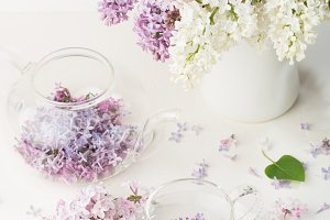 Tea from lilac flowers on white background