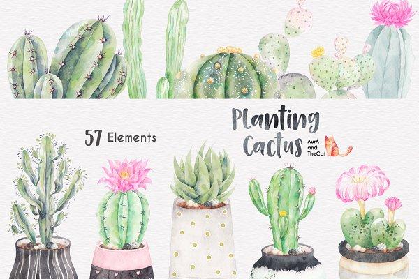 Planting Cactus Watercolor Clipart