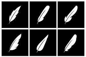 Vector feather on black background