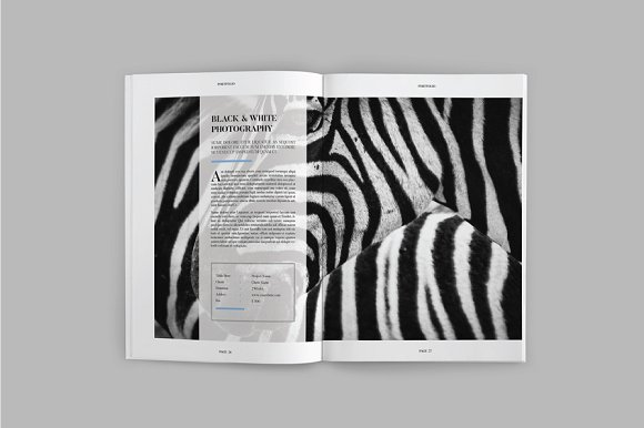 Peppa Loppin Portfolio Vol. V in Brochure Templates - product preview 6