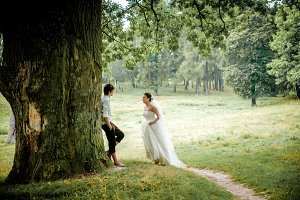 the bride and groom near old wood in summer, beautiful background