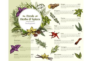 Vector menu price for spices and herbs shop