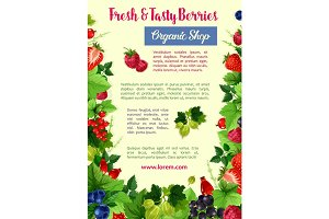 Berries and fruits vector poster for farm shop