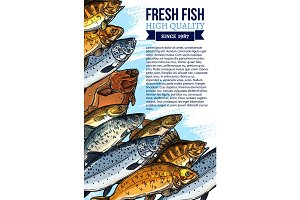 Vector fresh fish catch poster for market