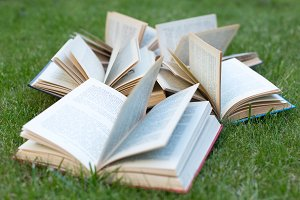 Open books lying on a green grass