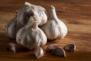 Bulgs of garlic on wooden table