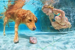 Child with dog swimming underwater