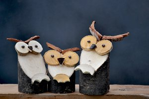 Owls family on wood