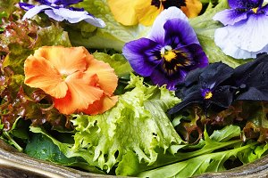 Healthy herbal salad with flower