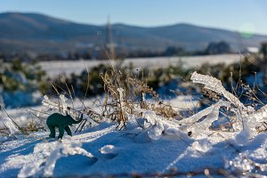 Plasticine elephant winter adventure. Frozen grass.