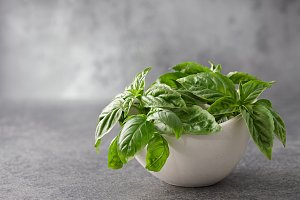 Fresh basil leaves in bowl