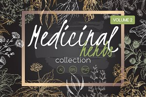 Medicinal herbs sketch set Vol. 2