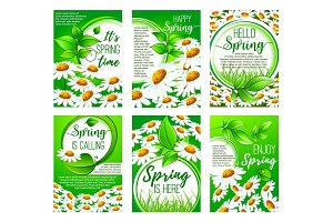 Spring flower greeting card set for holiday design