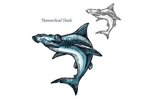 Hammerhead shark fish vector isolated sketch icon