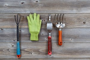 Garden Hand Tools on Wood