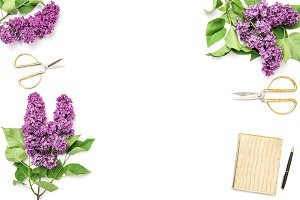Lilac flowers Floral flat lay