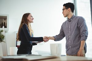 Business executives shaking hands with each other