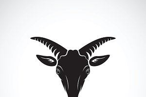 Vector of a goats mountain head.