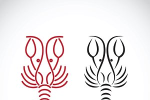 Vector of lobster shrimp design.