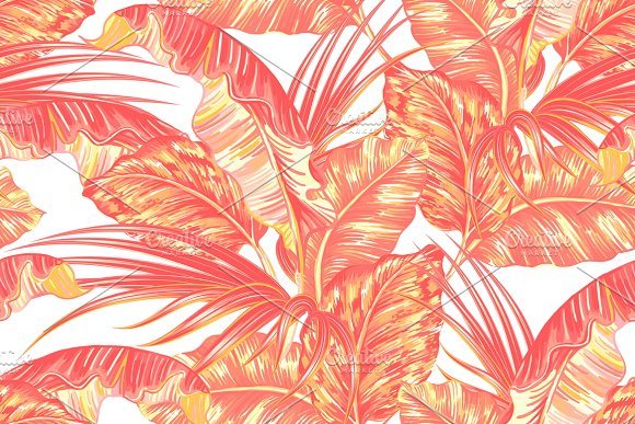 tropical jungle leaves pattern graphic patterns creative market